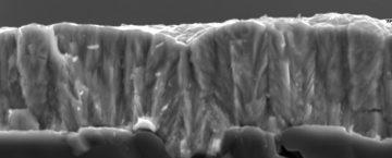 Fractographie d'un alliage colonnaire sur substrat d'Alumine